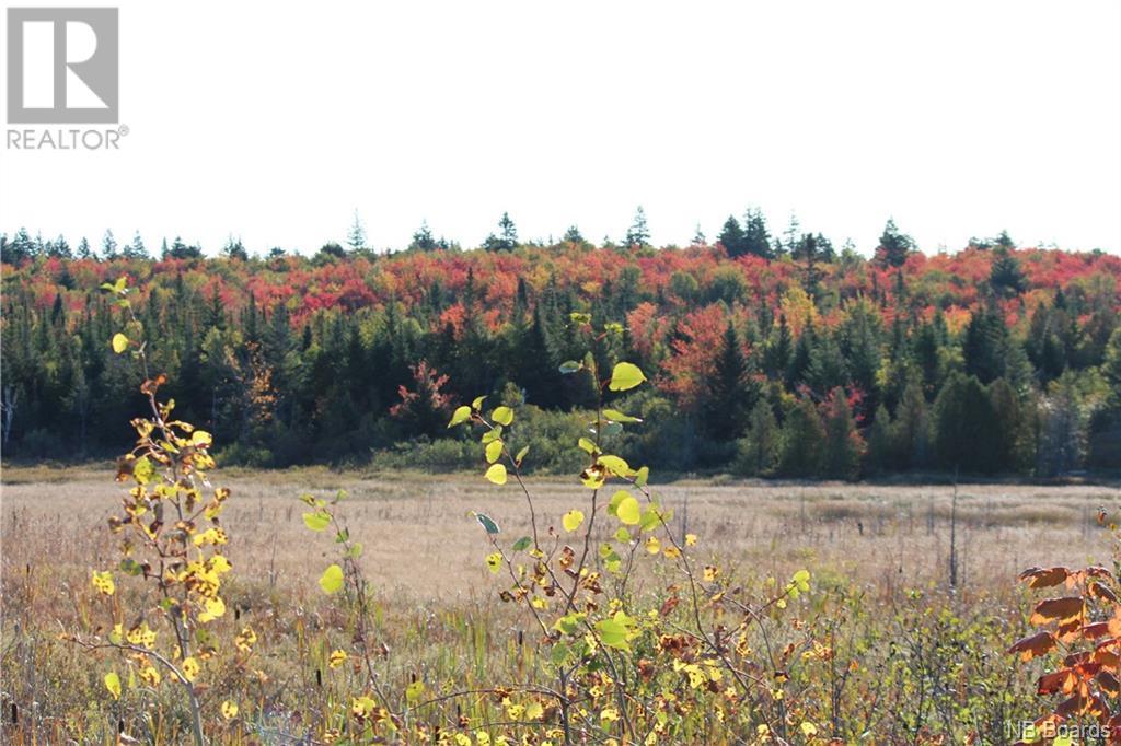 10 Clark Road, Saint John, New Brunswick  E2H 2X2 - Photo 3 - NB034832