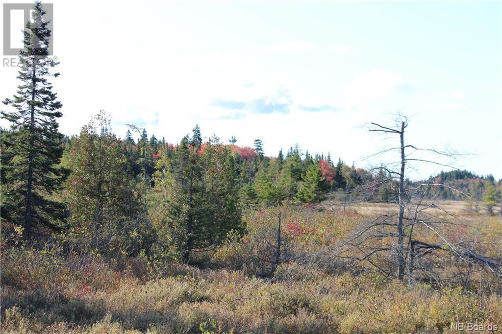 - Route 1 Fox Farm Exit #133, Saint John, New Brunswick  E2H 2X2 - Photo 5 - NB034832
