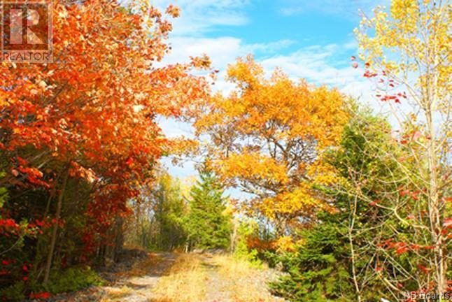 - Manners Sutton Road, Saint John, New Brunswick  E2K 4T1 - Photo 3 - NB048874