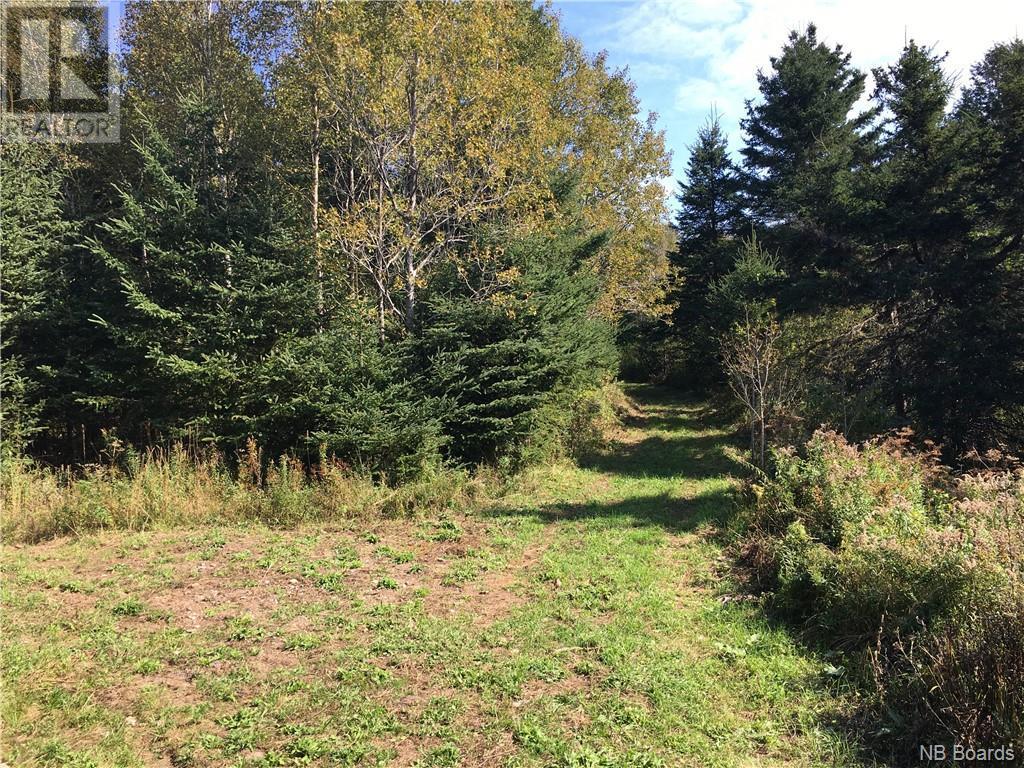 - Ashburn Road, Saint John, New Brunswick  E2K 5K7 - Photo 11 - NB064391