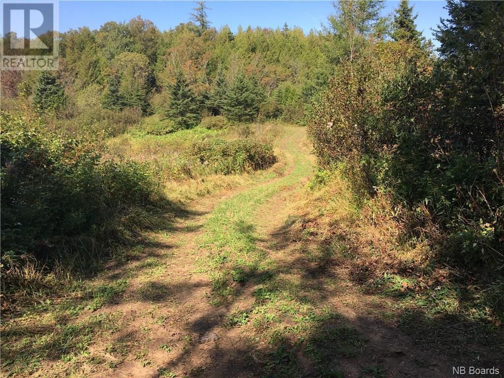 - Ashburn Road, Saint John, New Brunswick  E2K 5K7 - Photo 22 - NB064391