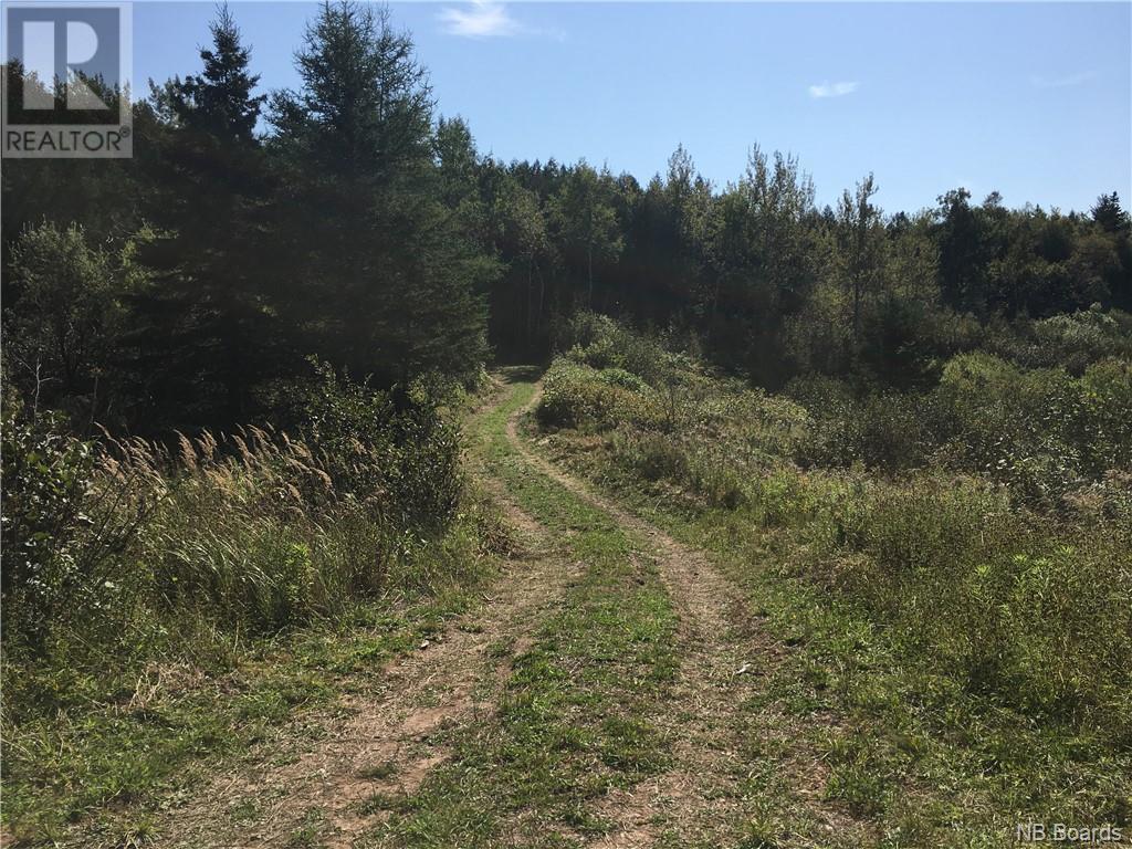 - Ashburn Road, Saint John, New Brunswick  E2K 5K7 - Photo 29 - NB064391
