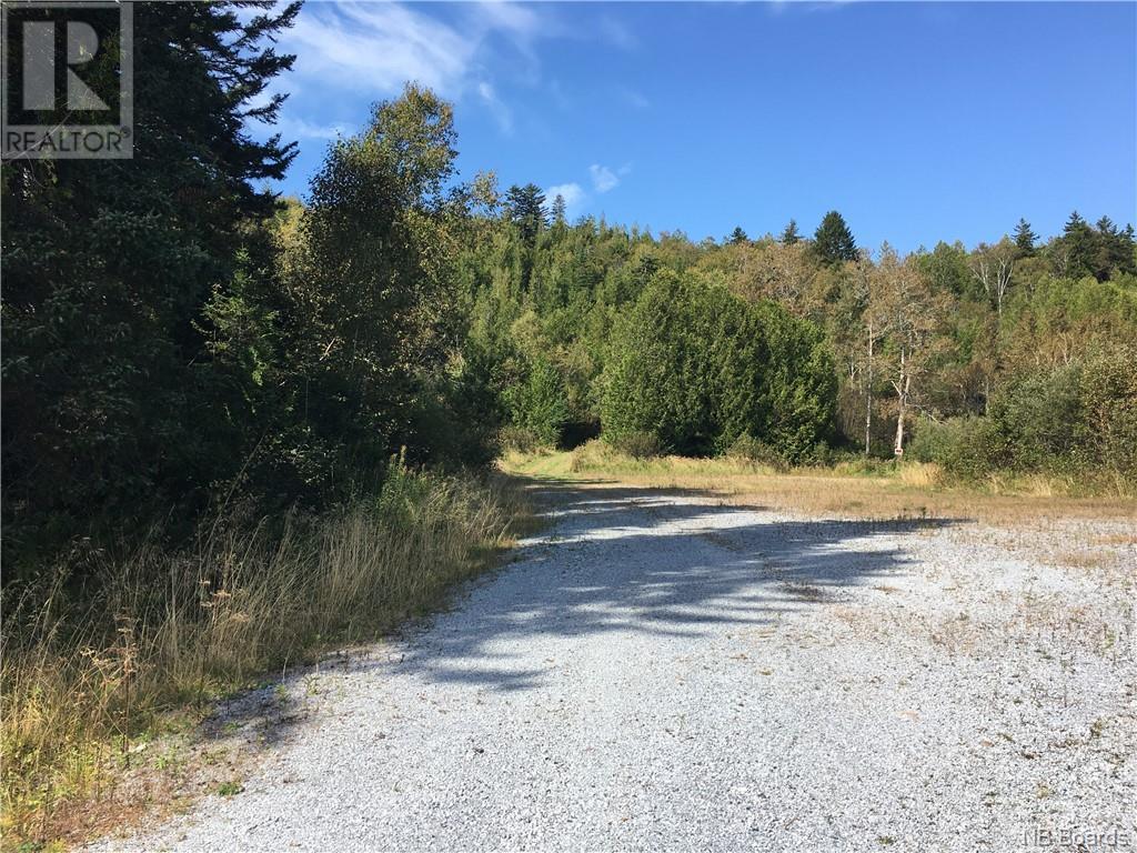 - Ashburn Road, Saint John, New Brunswick  E2K 5K7 - Photo 5 - NB064391